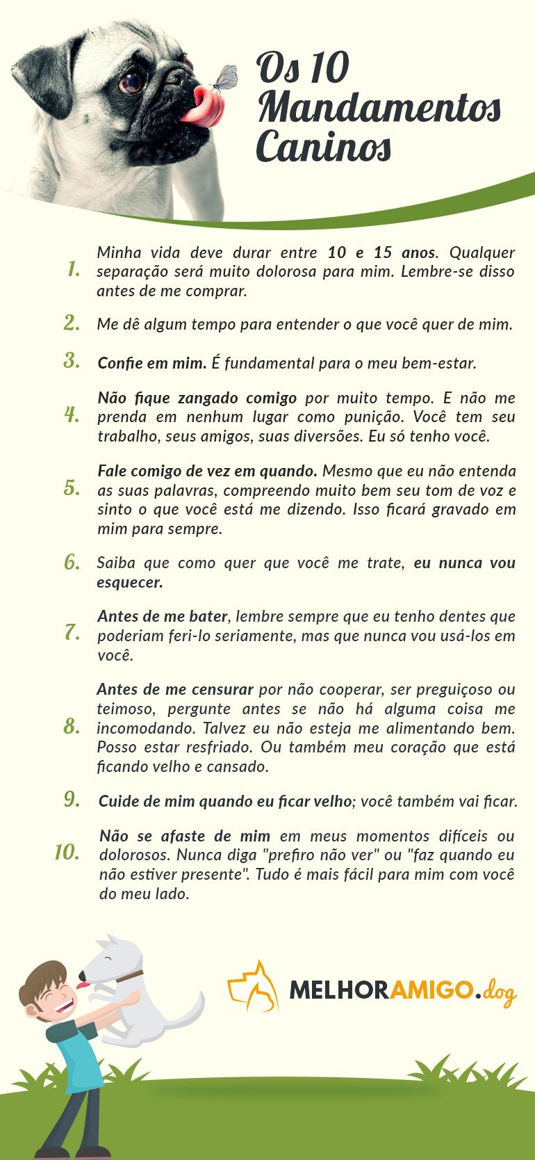 10 mandamentos caninos
