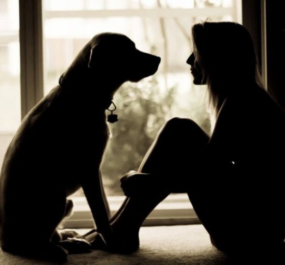 10 Motivos para ter um cachorro em casa