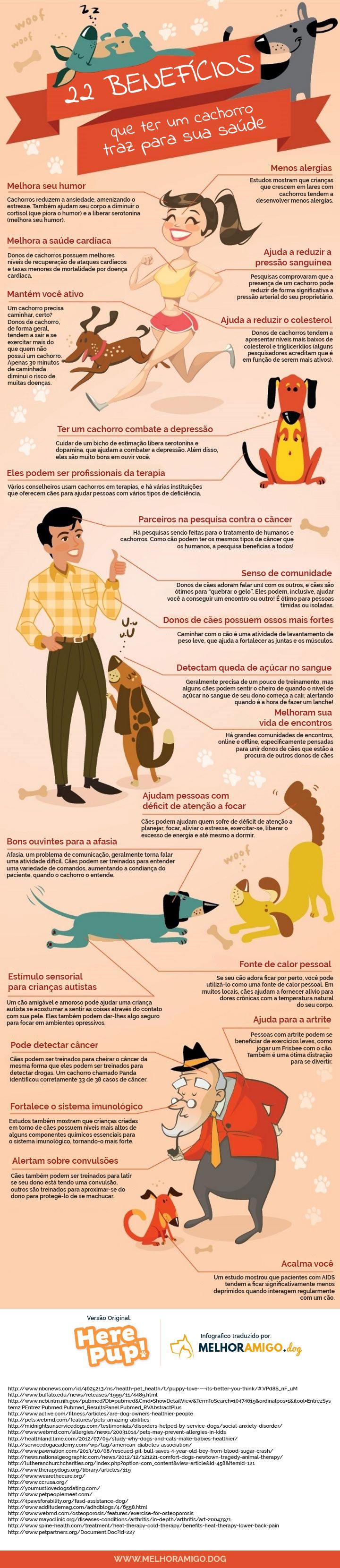 Benefícios de ter um cachorro [Infográfico]