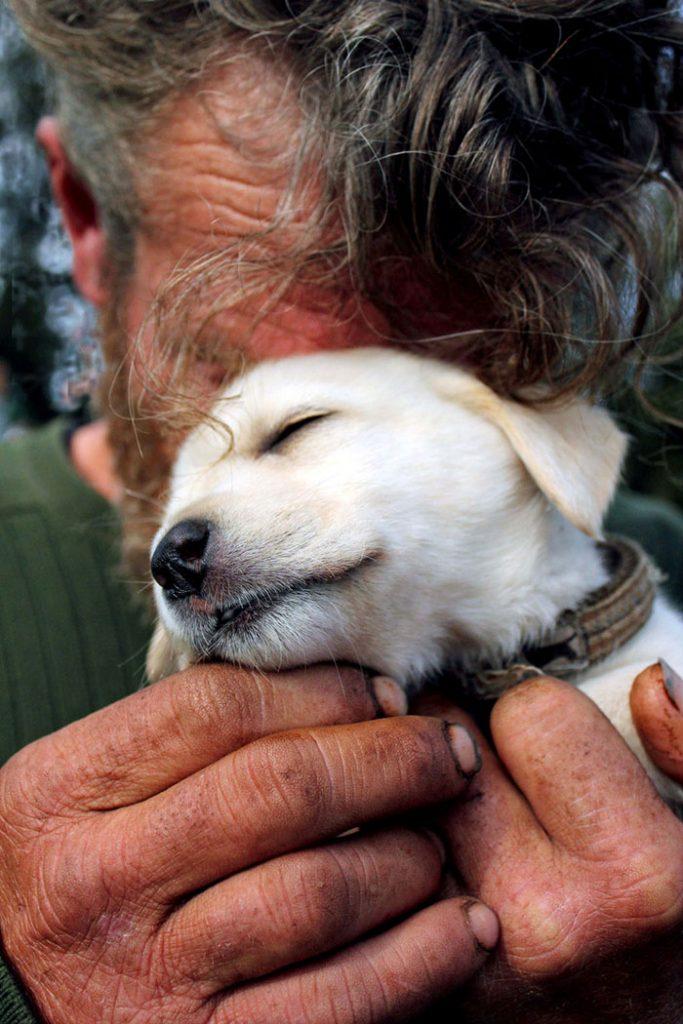 cachorros-que-amam-os-donos-independente-de-dinheiro-1