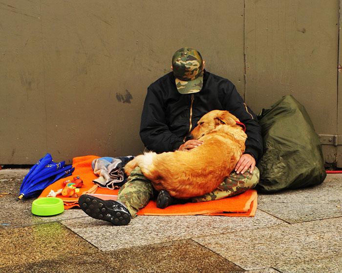 cachorros-que-amam-os-donos-independente-de-dinheiro-14