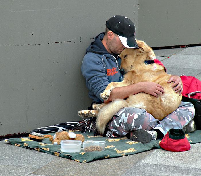 cachorros-que-amam-os-donos-independente-de-dinheiro-2