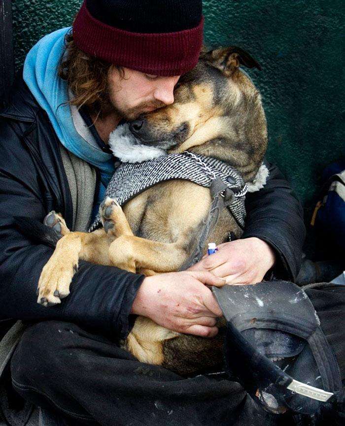 cachorros-que-amam-os-donos-independente-de-dinheiro-3