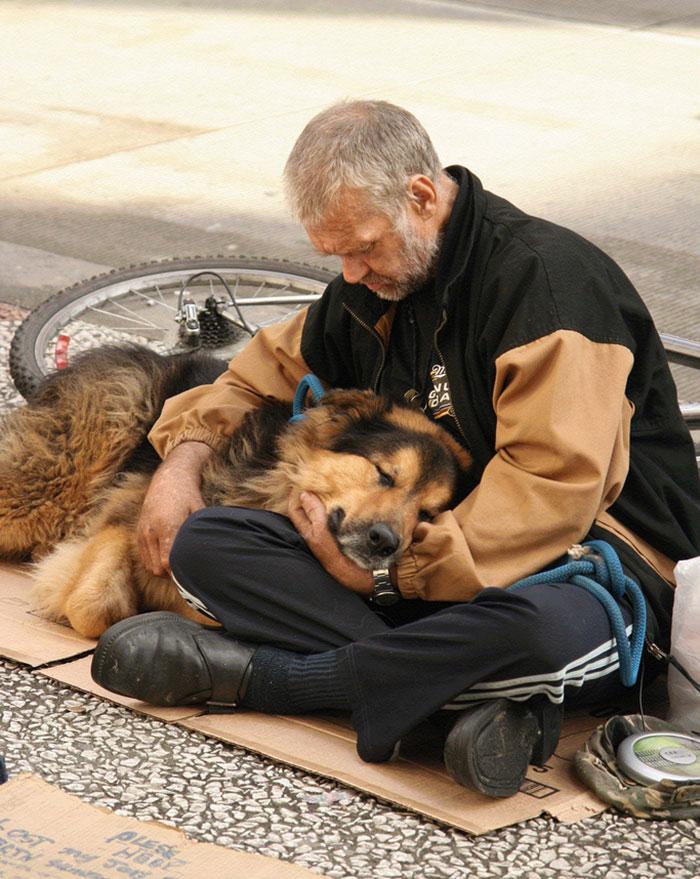 cachorros-que-amam-os-donos-independente-de-dinheiro-9