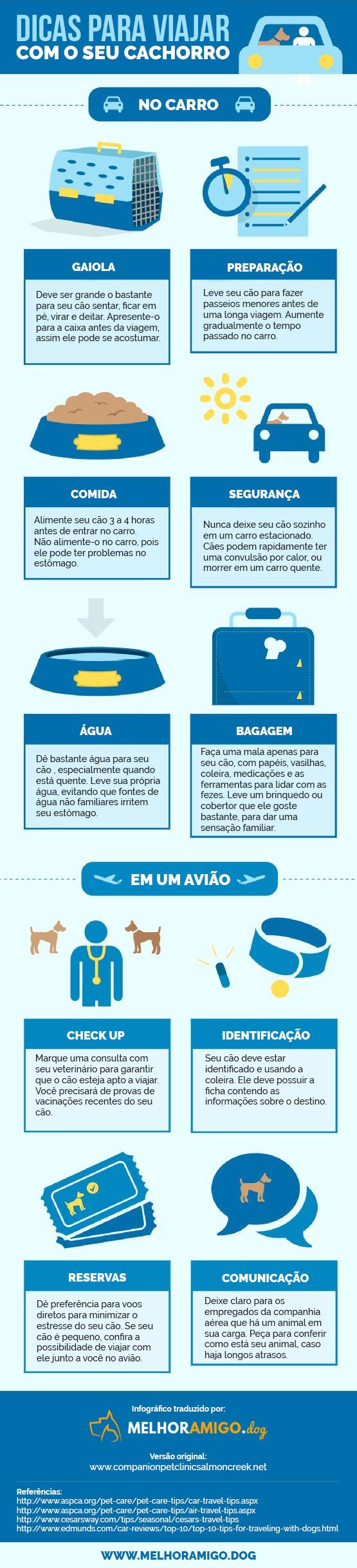 infográfico com dicas para viajar com seu cachorro