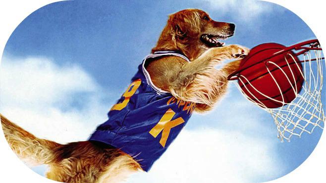 cachorros-famosos-dos-filmes-2