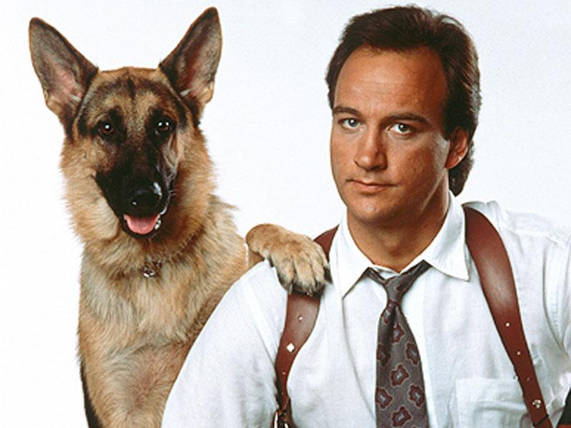 cachorros-famosos-dos-filmes-4