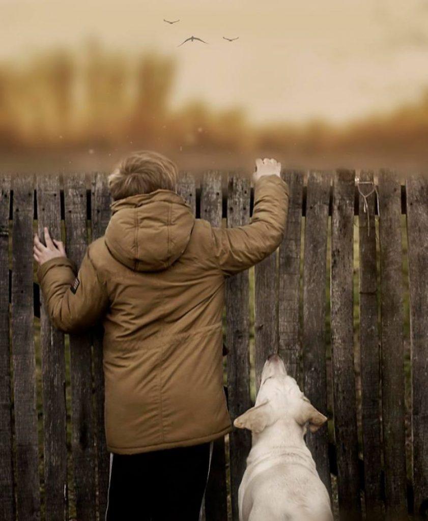 garoto-e-seus-cachorros-resgatados-11