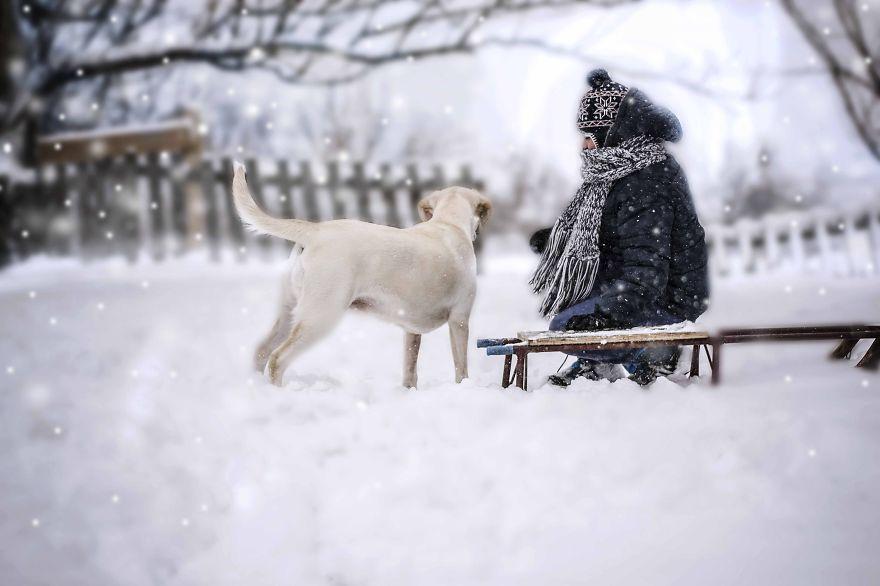 garoto-e-seus-cachorros-resgatados-12