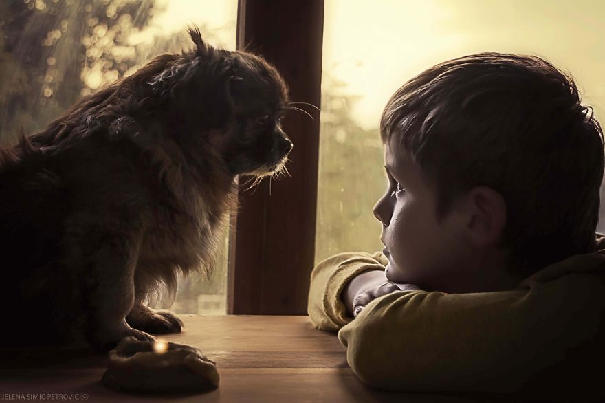 garoto-e-seus-cachorros-resgatados-7