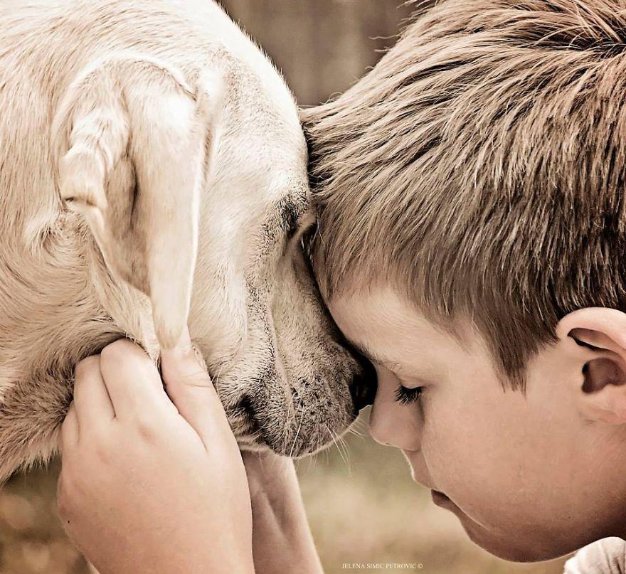 garoto-e-seus-cachorros-resgatados-9