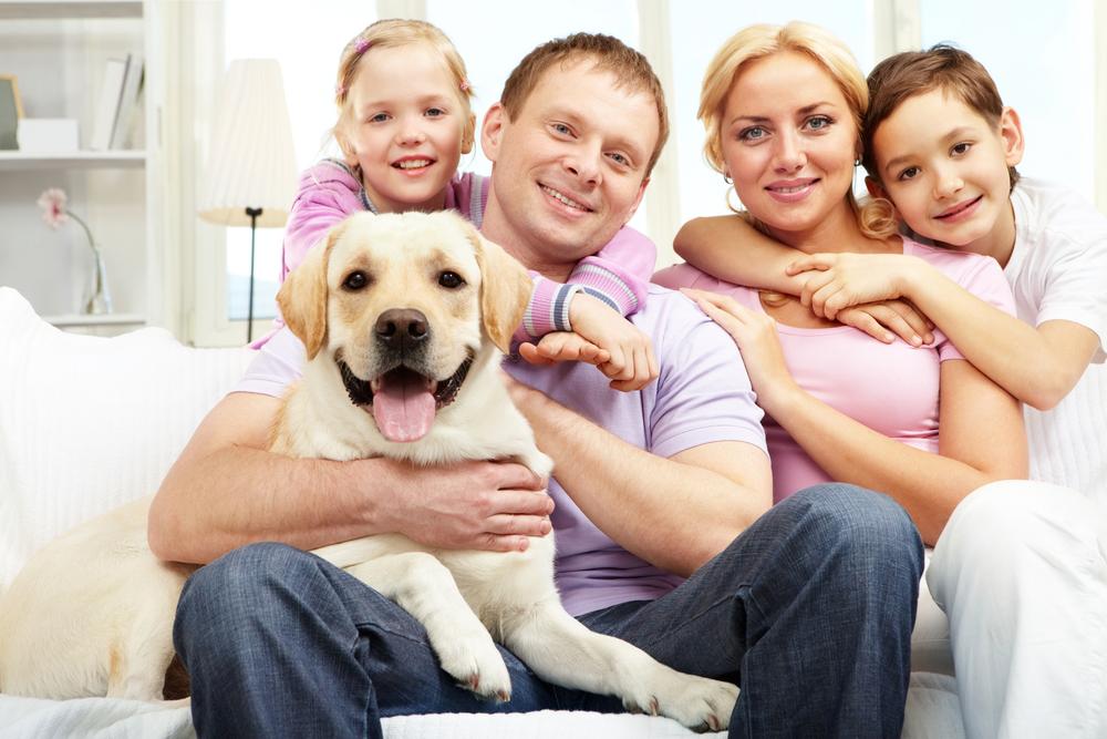 o-que-voce-precisa-saber-antes-de-ter-um-cachorro