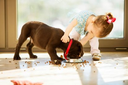 Cachorro e criança