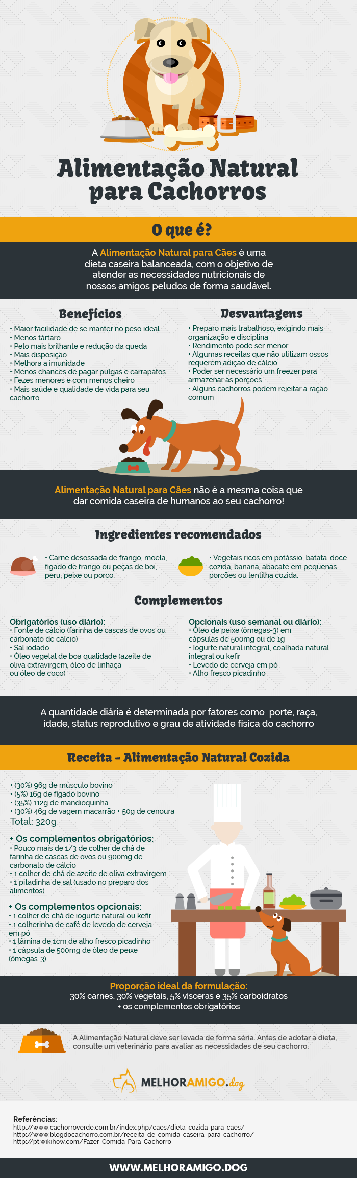 Infografico Alimentação Saudavel cachorros